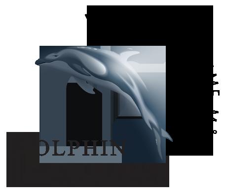 Dolphin Consult logo